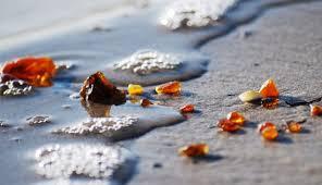 Картинки по запросу калининград море фото