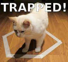 cat meme Archives - Crazy Jack Wild Casino StuffCrazy Jack Wild ... via Relatably.com