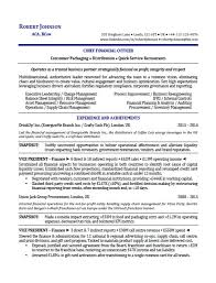 Executive Resume Writing Sample International Executive Resume Executive Resume