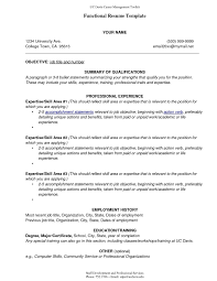 Sample Combination Resume Understand The Background Of Sample Combination Resume Now Sample 16