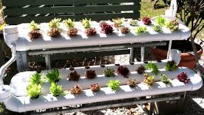 indoor hydroponic gardening. Home-hydroponics-systems-indoor-gardening Indoor Hydroponic Gardening T