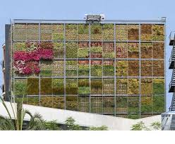 vertical gardens vs vertical farms vs