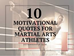 Martial Arts Quotes Magnificent 48 Motivational Quotes For Martial Arts Athletes