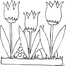 Eagle Coloring Page Animals Town Color
