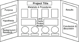Science Fair Projects Layout Project Layout Moriarty Elementary Science Fair