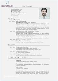 Resume Format 2016 Beauteous 28 Impressive Current Resume Format 28 Resume Template