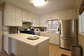 kitchen cabinets painting ideas ideal suggestions homes