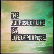 Purpose Of Life Quotes Stunning Purpose Of Life Quotes Sayings Purpose Of Life Picture Quotes