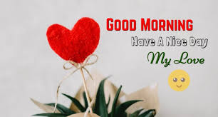 Good Morning Messages For Boyfriend Cute Morning Text Msg For Him Gorgeous Good Morning Love Messages For Boyfriend On Valentine Day