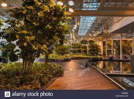 Park Lighting Calgary Devonian Gardens Indoor Park At Core Shopping Centre In