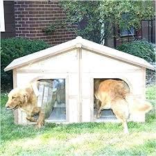 plexidor weatherproof dog doors door how to a awesome pet patio pacific flap wall mount best