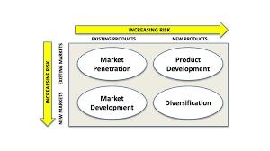 Foundation Matrix Chart Ansoff Matrix Business Tutor2u