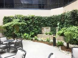 informal green wall indoors. Regis Chelmer Aged Care \u2013 Brisbane · Vertical Garden Informal Green Wall Indoors