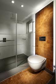 toilet bidet combo bathroom modern with ceiling lighting frameless shower glass shower glass wall minimal ceiling wall shower lighting
