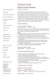 Enjoyable Design Executive Resume 9 Executive Cv Template Resume