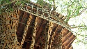 Worlds Largest Tree House Crossville TN As Seen On ABC WKRNTV Largest Treehouse In America