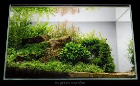 ada cube garden 60 p 60x30x36cm 6mm 4 hooks incl
