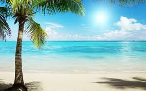 Free Beach Background, Download Free ...
