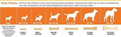 Toy Australian Shepherd Size Chart Nylabone Dura Chew Power Chew Dog Toy