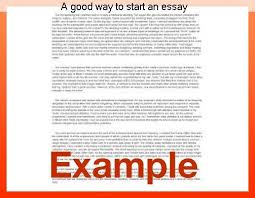 essay on domestic violence act