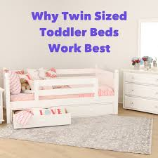 twin sized toddler beds