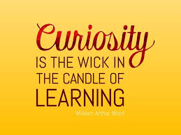 Curiosity Quotes Custom Curiosity Quotes 48 Quotes Colorful Pictures Stuff
