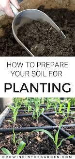 organic gardening tips garden soil