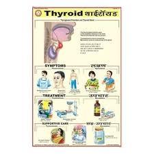 Blood Pressure Charts Bep Edu World Exporter In Kondhwa