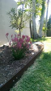 the best border material for your garden