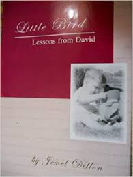 LITTLE BIRD LESSONS FROM DAVID: JEWEL DILLON: Amazon.com: Books