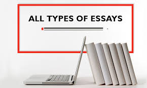 all types of essays written for you