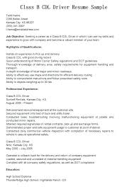 Delivery Driver Resume Sample Pizza Delivery Driver Resume Sample