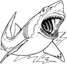 Small Picture Shark Drawing Coloring Page Throughout Megalodon Coloring Pages