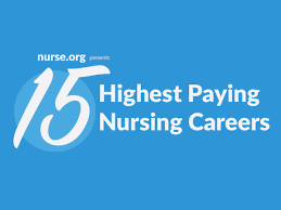 highest paying nursing careers infographic