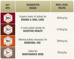 Raw Manuka Honey Certified Mgo 820 Npa 20 Highest Grade Medicinal Strength Manuka With Antibacterial Activity 250g By Good Natured