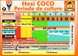 Hesi Soil Chart Hesi Tnt Growth Complex For Soil And Coco 1l