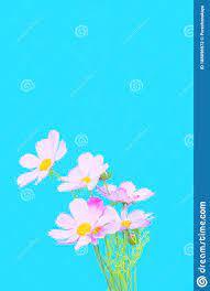 Flowers Aesthetic Wallpaper. Blue ...