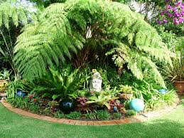 Small Picture Delighful Tropical Garden Ideas Brisbane Gardening And