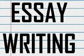 here importance of the essay writing services  here importance of the essay writing services