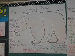Grizzly Bear Classification Chart Bear Unit Grizzly Bear Pictorial Input Chart Grizzly Bear