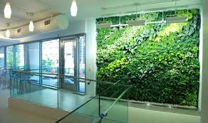 indoor hydroponic vegetable garden. Living-walls-office-building-indoor-gardening-service Indoor Hydroponic Vegetable Garden