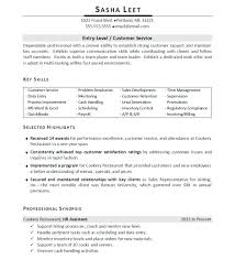 personal skills in resume examples cipanewsletter personal skills for resume personal examples sample entry level