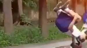 kids from viral somersault video join