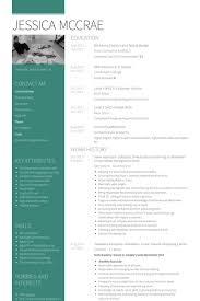 sales assistant resume samples   visualcv resume samples databasesales assistant resume samples