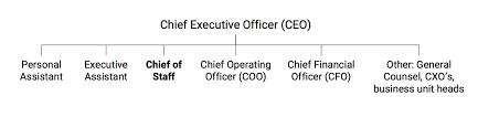 Deputy Coo Job Description Major Magdalene Project Org