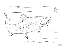 Small Picture Two Northern Pikes coloring page Free Printable Coloring Pages