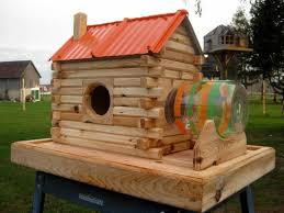 extreme squirrel feeders and dog houses contractortalk