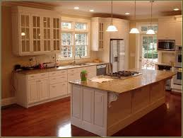 Small Picture Black Kitchen Cabinet With Image Of Elegant Home Depot Kitchen