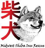 Midwest <b>Shiba Inu</b> Rescue