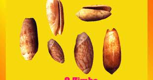 Resultado de imagem para história do zimbo ao kwanza